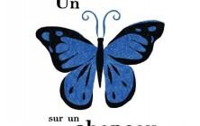 un-papillon-sur-un-chapeau