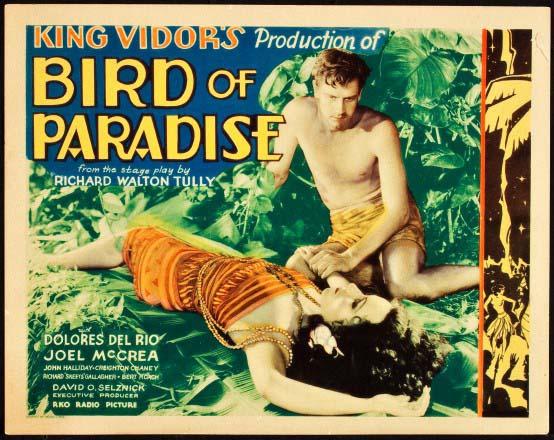 Bird of Paradise - aff 1
