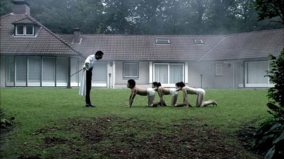 the human centiped