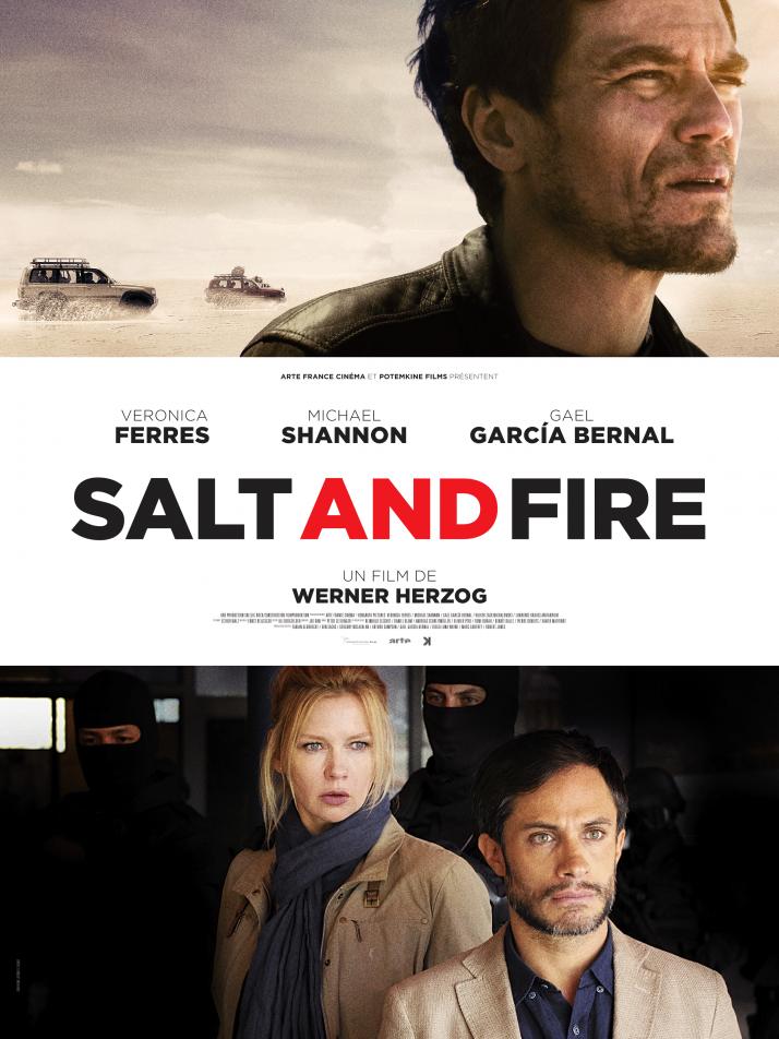 affichedef-saltfire