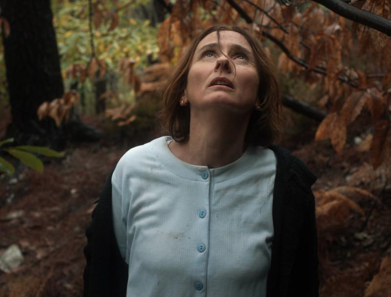 La chair - Les Films Invisibles, Franch kiss & Aum films (2016)