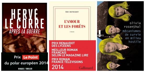 roman-france-2014-01