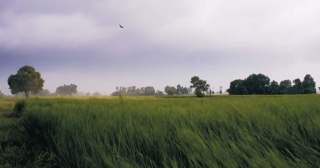 chauthi-koot-paysage