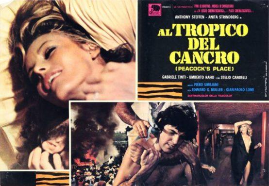 tropique-du-cancer-001-620x429