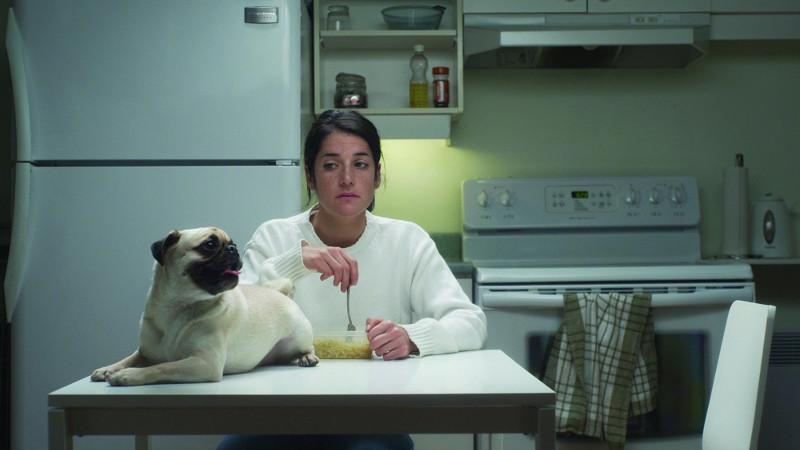 Chef de meute (2012) de Chloé Robichaud